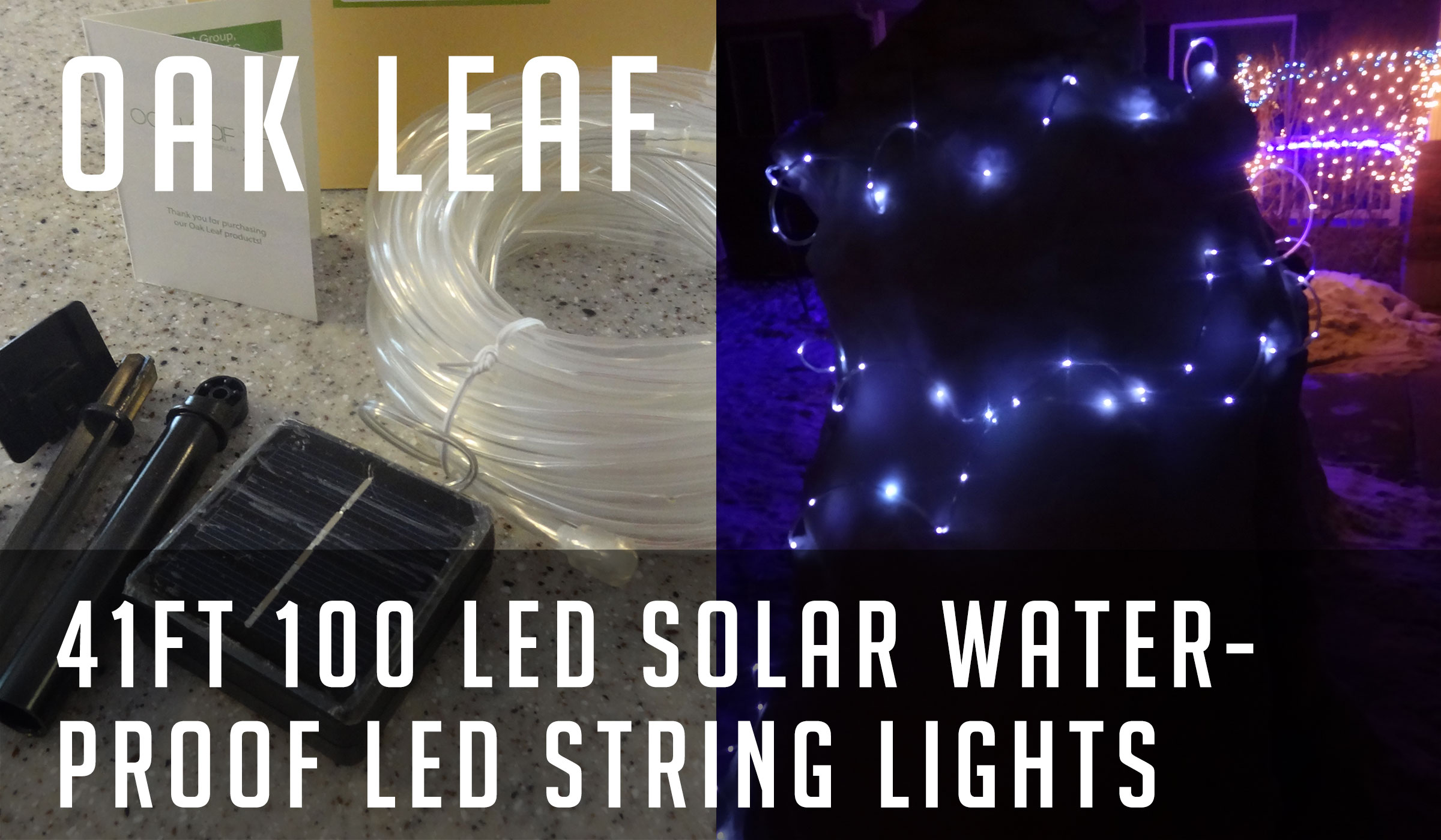 Led Lights Half String Out : Review: Oak Leaf Christmas 41ft 100 LED Solar Waterproof LED String Light ? Reviews of Cool Stuff